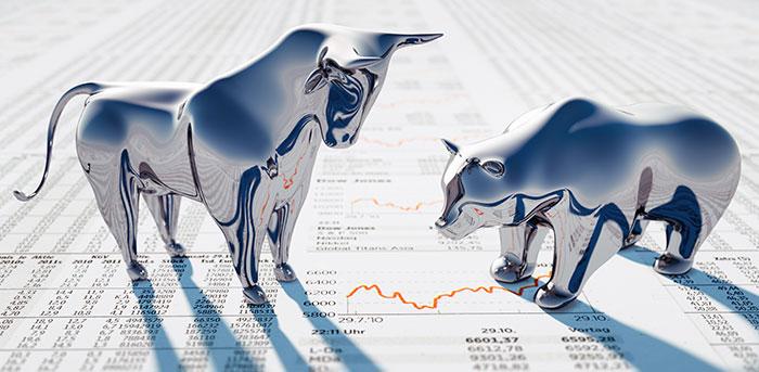 Stock Animals